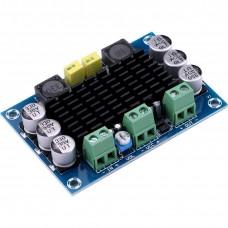 TPA3116D2 Board DC 12-26V 100W TPA3116DA Mono Channel Digital Power Audio Amplifier XH-M542